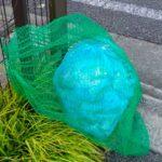 カラスがゴミを荒らさなくなった!実際にやって効果のあった対策法を紹介!