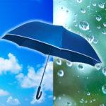 日傘と雨傘の兼用は可能?両方の違いと注意点を知れば兼用OK!